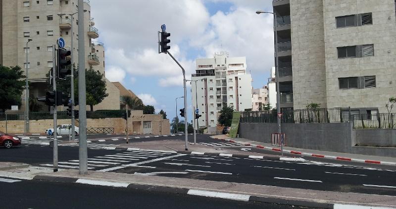 שכונת סביוני דניה בחיפה (צילום: ירון כרמי)