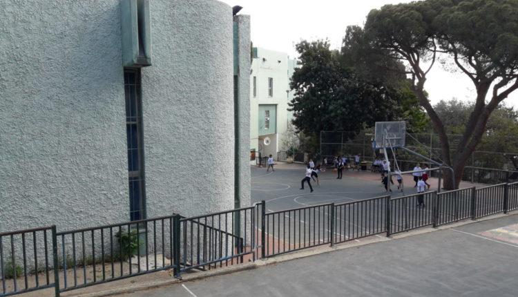 בית ספר דוד ילין, מרכז הכרמל