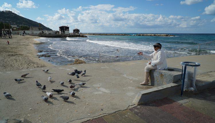 שרה ואקנין מאכילה את היונים – חוף בת גלים (צילום – ירון כרמי)