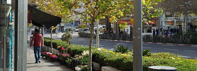 רחוב בהדר הכרמל (צילום: ירון כרמי)