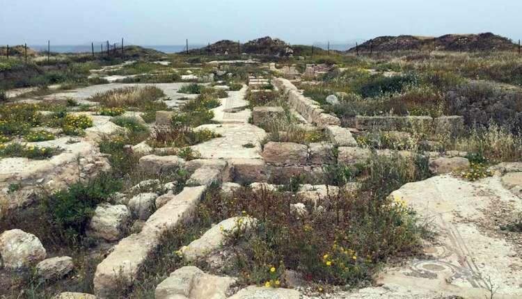 עתיקות תל שקמונה ובמרכזן הפסיפס (צילום – ירון כרמי)
