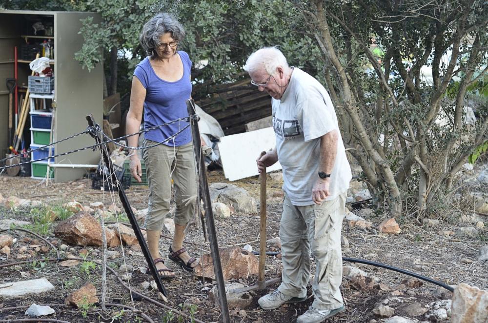 גינה קהילתית - גבעת השבשבת בשכונת נווה שאנן בחיפה (צילום: חגית אברהם)
