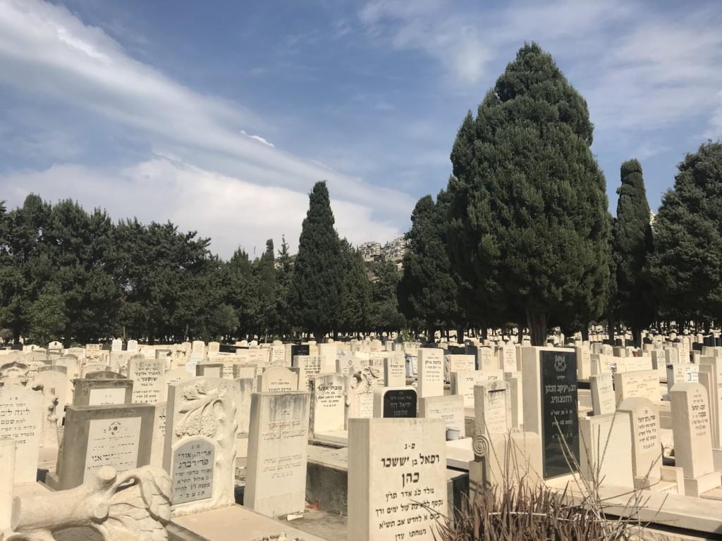 בית הקברות בנווה דוד