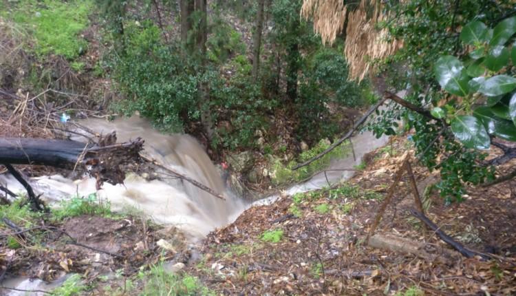מפל מים בחיפה בפארק שליד אינטרנציונל (צילום – תומר טל)