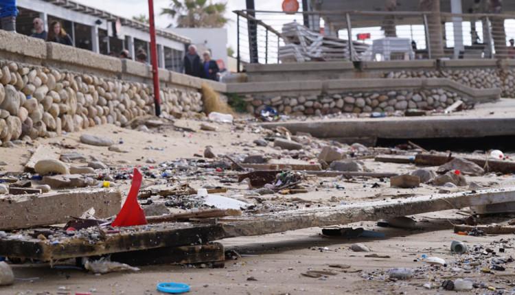 שברי עצים שפלטו – נזקים בטיילת חוף דדו בחיפה לאחר הסערה 20.01.2018 (צילום – ירון כרמי)