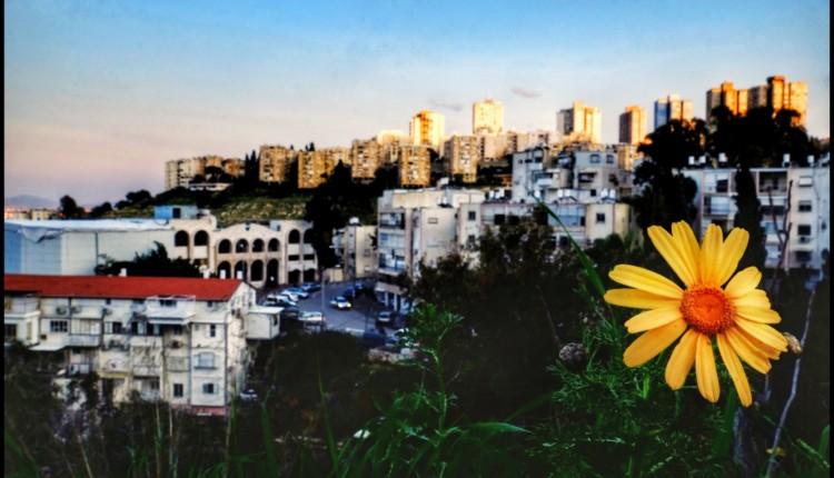 תמונת היום בחיפה – נווה שאנן (צילום – גלעד שטיין)