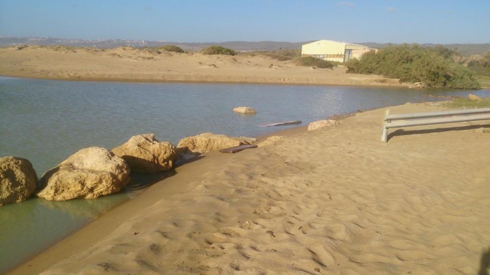 מפגע ריח - השלולית במוצא נחל אורן - חוף מבצר (צילום - איתי פרמינגר)