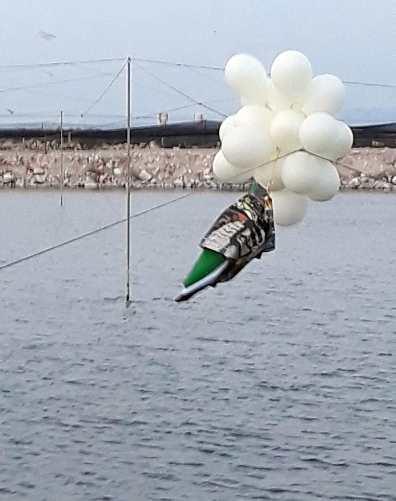 צרור בלוני הליום בבריכות הדגים של מעגן מיכאל (צילום: גיורא נצר, קב״ט מעגן מיכאל)