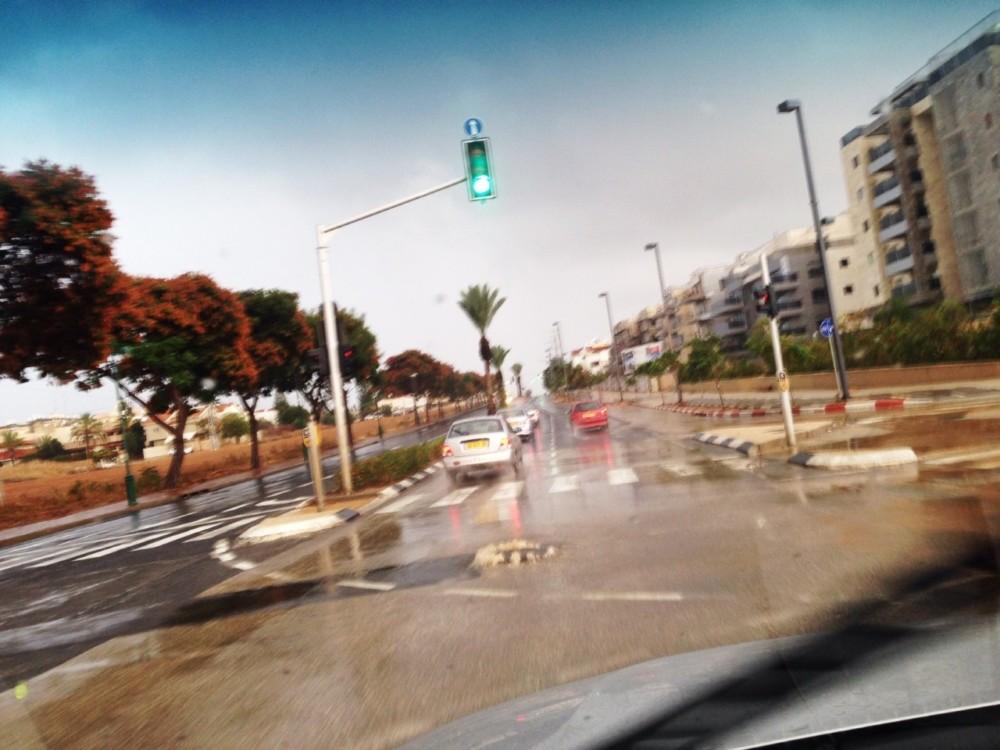 כבישים רטובים (צילום: אור ירוק)