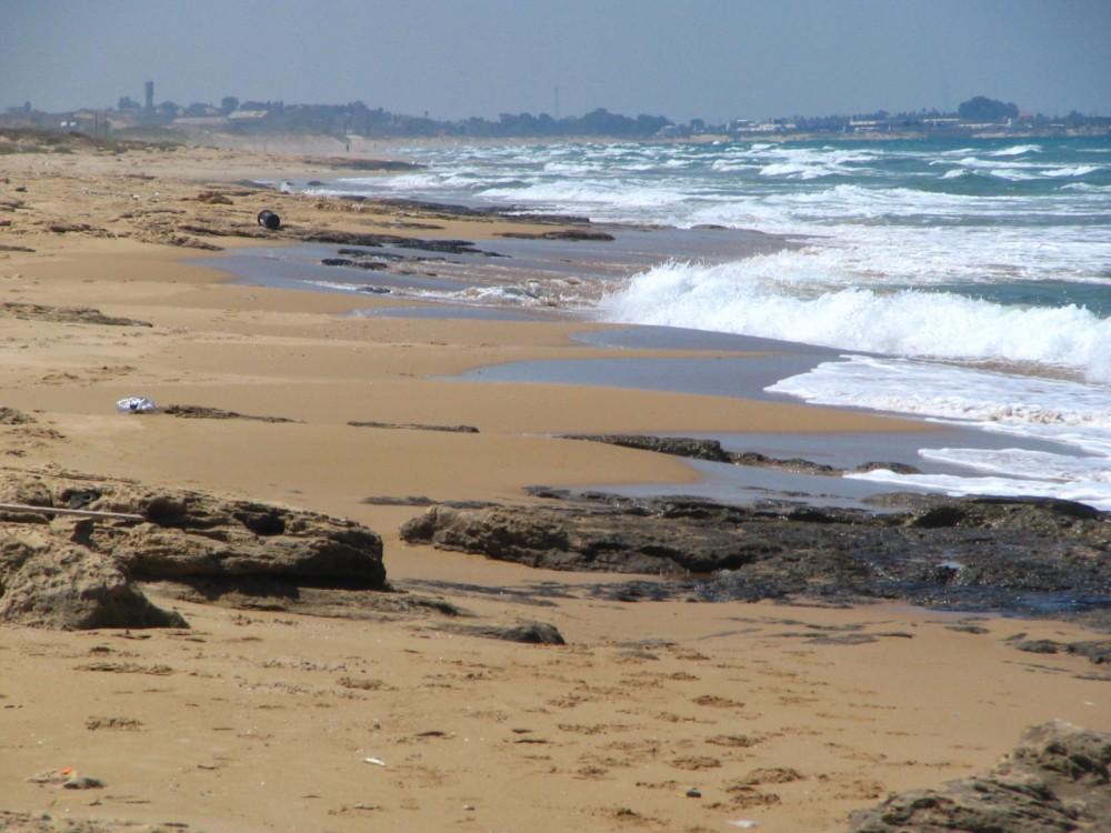 חוף עתלית וחוף הכרמל. צילומים: אילן מלסטר, המשרד להגנת הסביבה