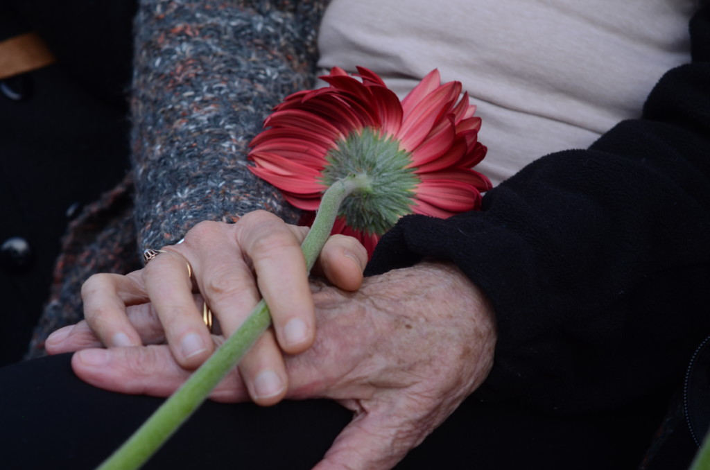 יום השואה הבינלאומי בחיפה - יד עזר לחבר (צילום: חגית אברהם)