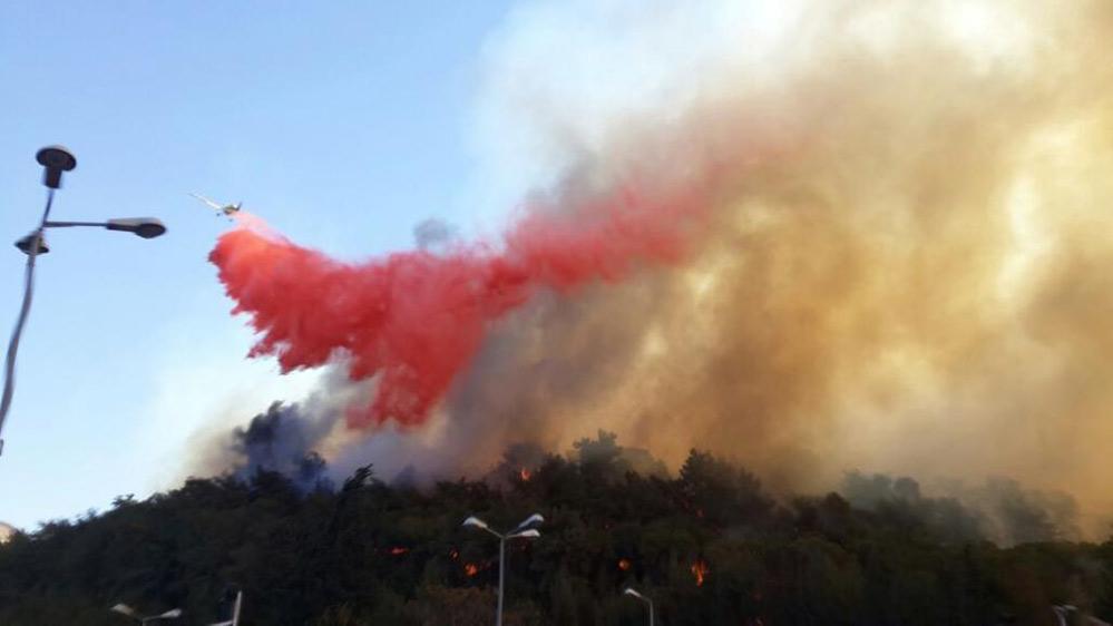 השרפה הגדולה בחיפה - מטוס כיבוי מפזר חומר מעכב בעירה - 24 בנובמבר 2016 (צילום: לוחמי האש)