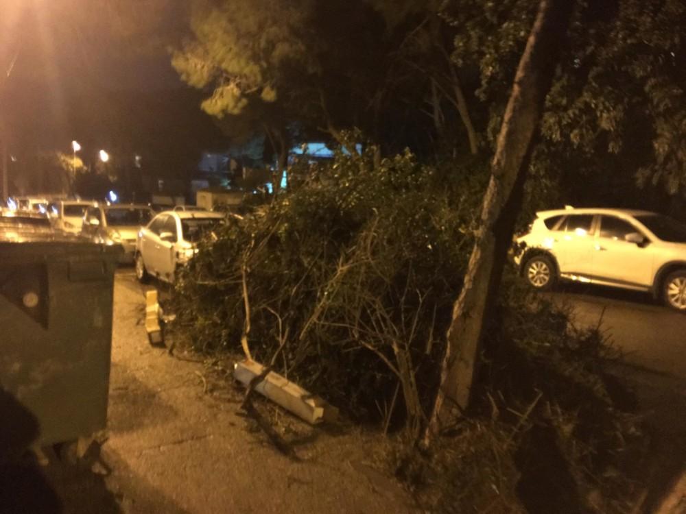 השביתה בחיפה - הגזם נערם ברחובות - רחוב התשבי 66 (צילום: חיים כהן)