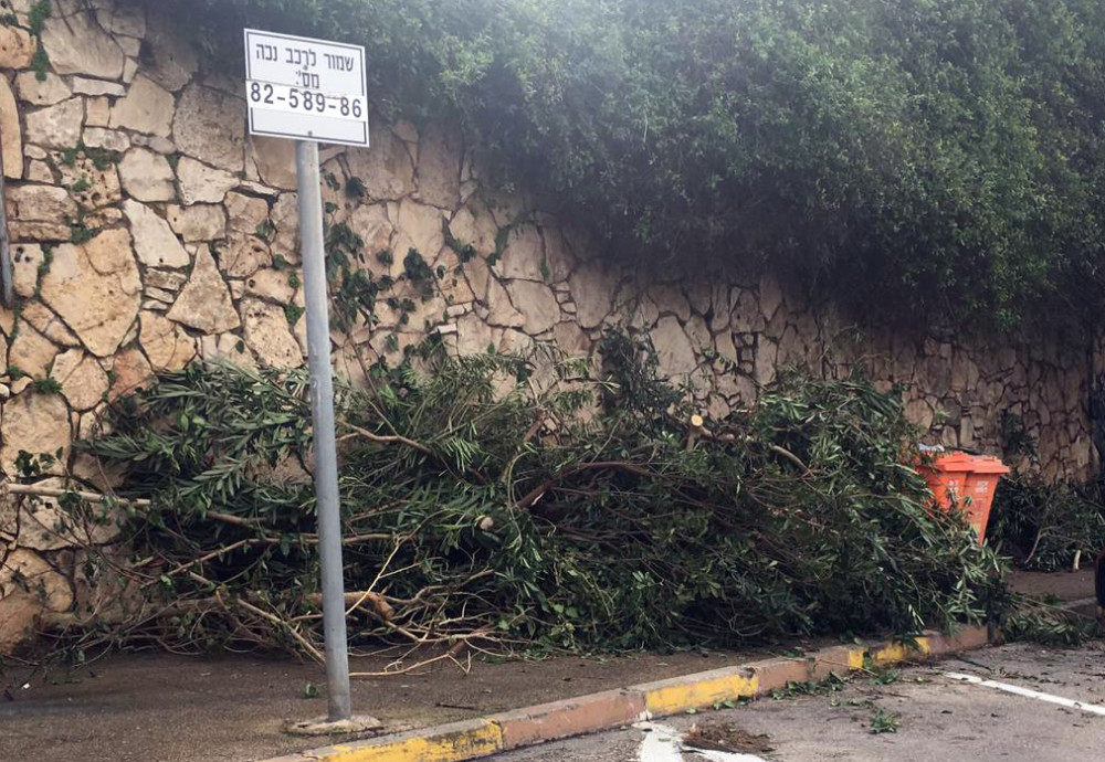 השביתה בחיפה - זבל ברחוב איינשטיין - קוראי חי פה מצלמים (צילום - אלינה ליברמן)
