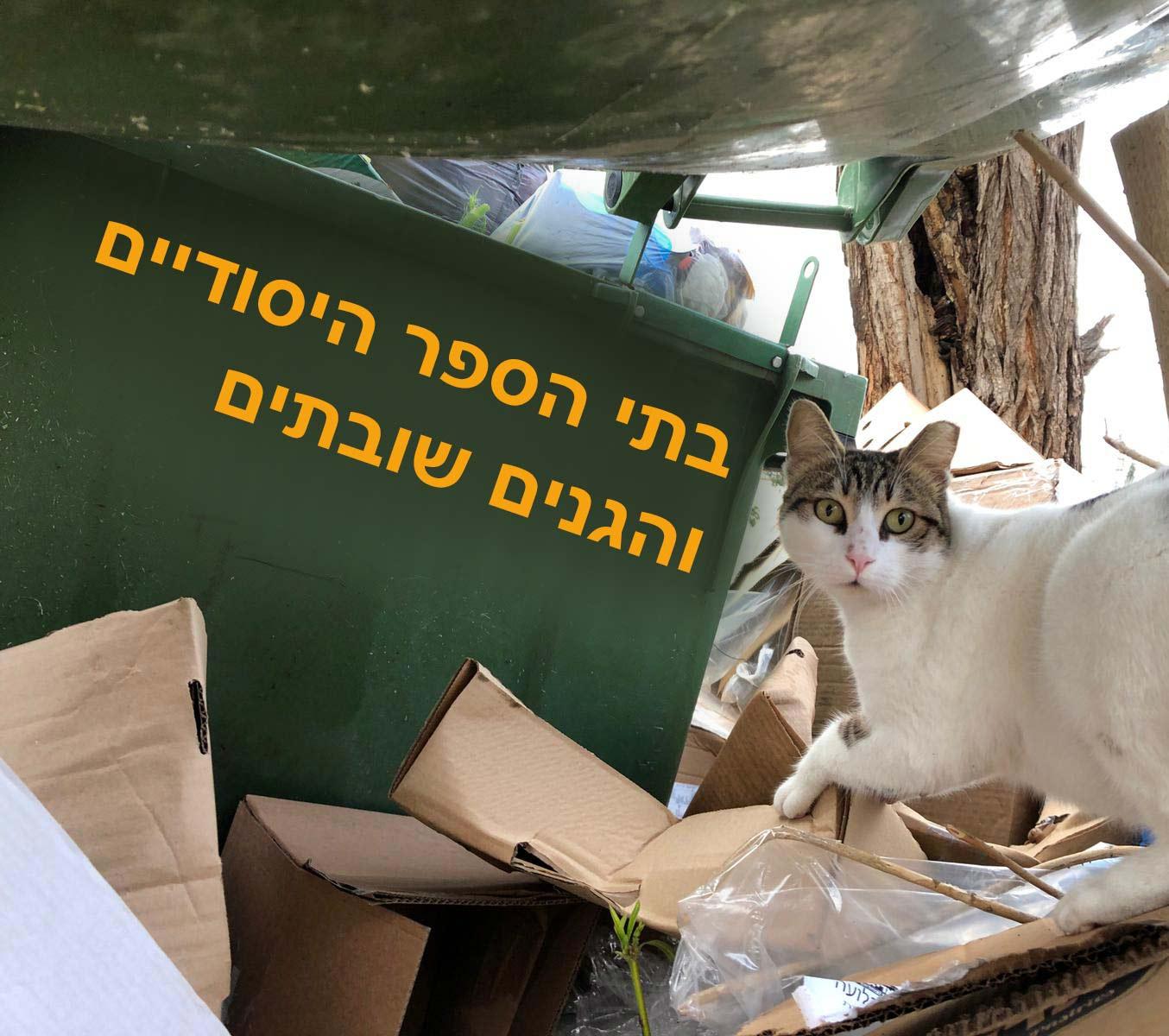 שביתה בחיפה - בתי הספר והגנים (צילום: ירון כרמי)