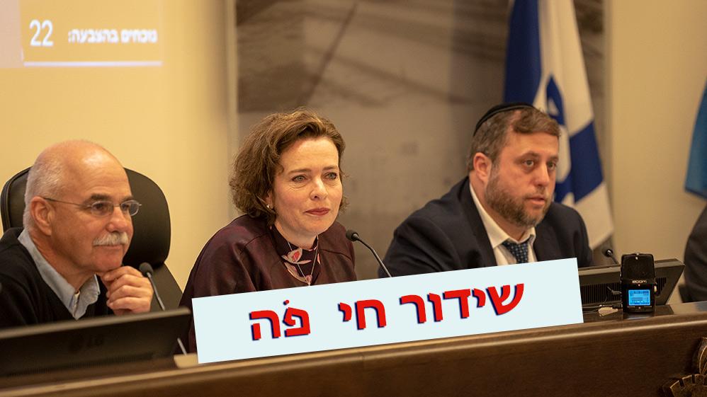 שידור חי ועדה מקומית מועצת העיר חיפה