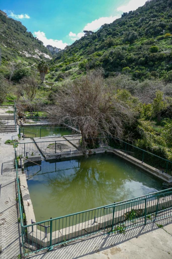 בריכות בוסתן כיאט מלאות מים - טיול חורף בנחל שיח בחיפה - התמונות ומסלול הטיול (צילום: גלעד שטיין)