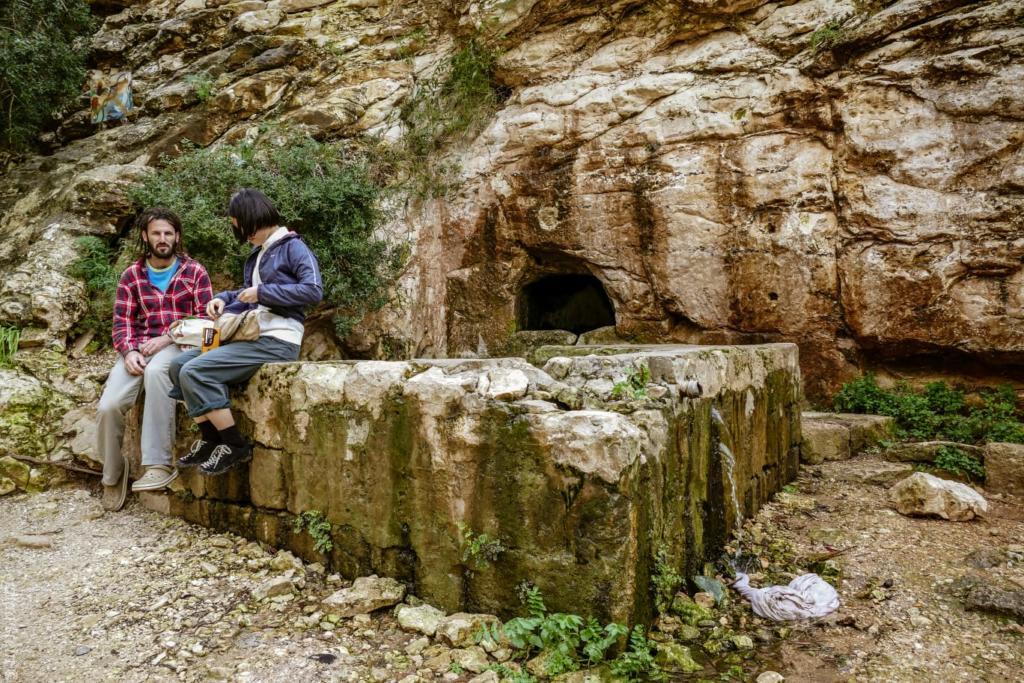מעיין בנחל שיח - טיול חורף בנחל שיח בחיפה - התמונות ומסלול הטיול (צילום: גלעד שטיין)