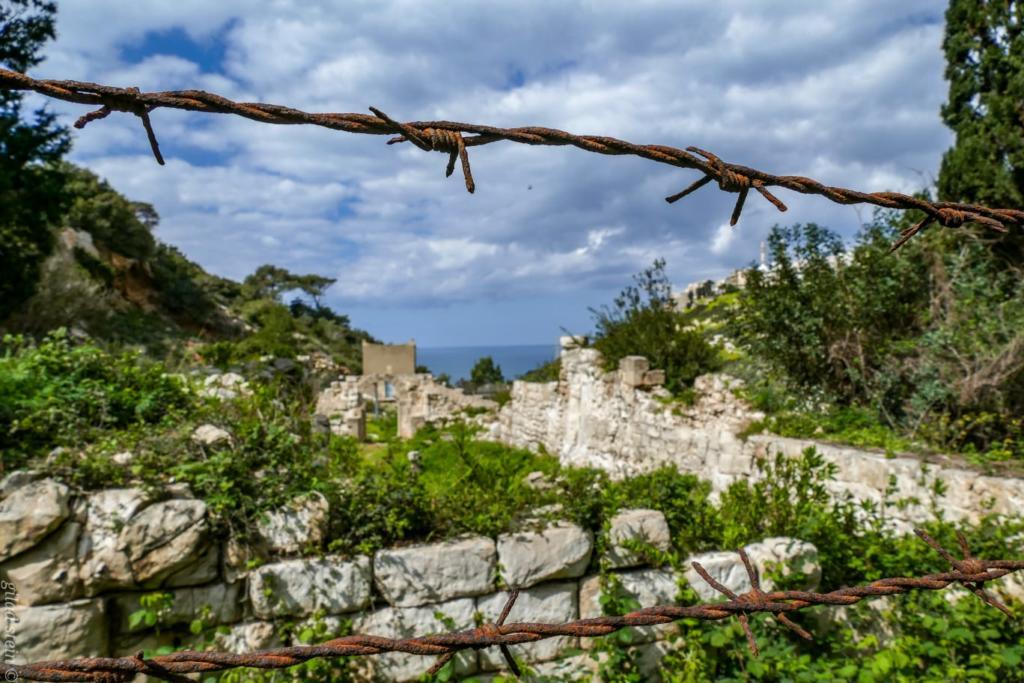שרידי מבנה עתיק בנחל שיח - טיול חורף בנחל שיח בחיפה - התמונות ומסלול הטיול (צילום: גלעד שטיין)