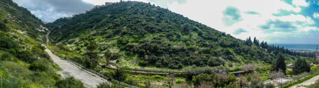 נחל שיח בחיפה - טיול חורף בנחל שיח בחיפה - התמונות ומסלול הטיול (צילום: גלעד שטיין)