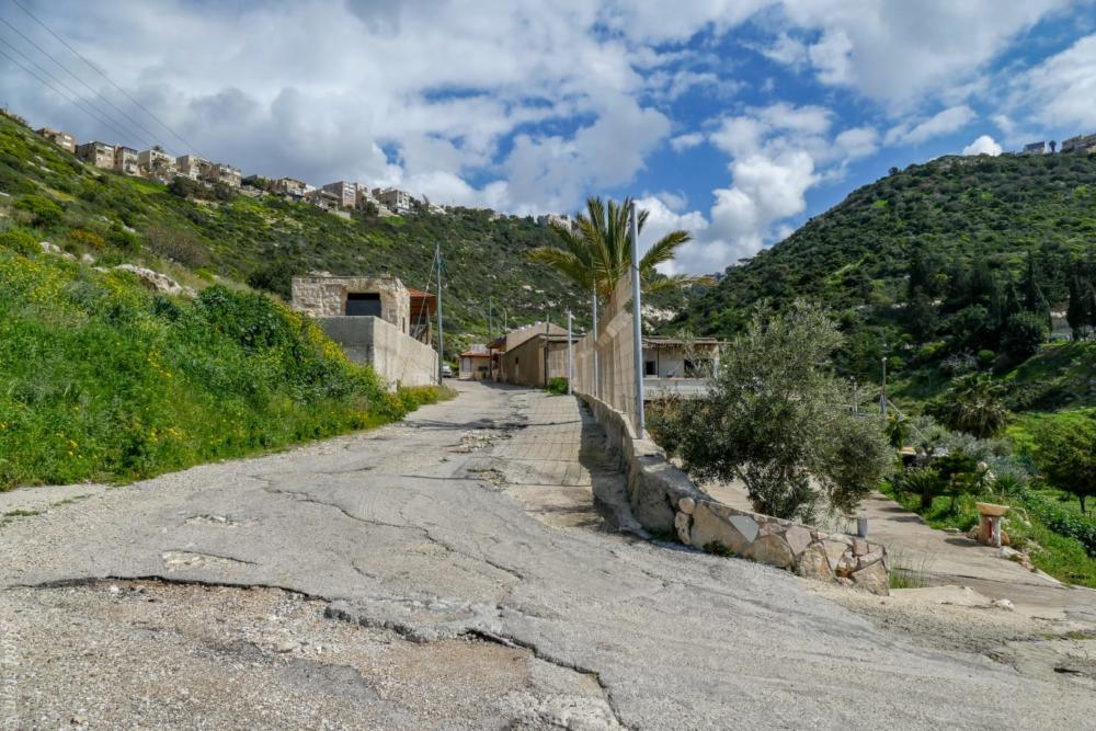 טיול חורף בנחל שיח בחיפה - התמונות ומסלול הטיול (צילום: גלעד שטיין)