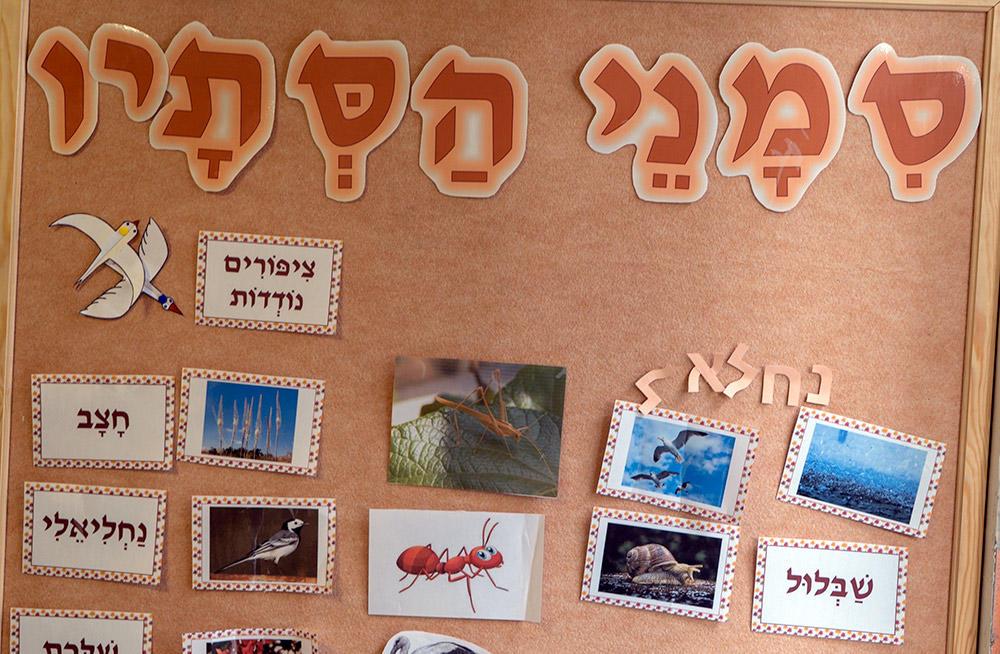 """גן חב""""ד - חלום של גן • """"גן שני-אור"""" בחיפה (צילום: ירון כרמי)"""