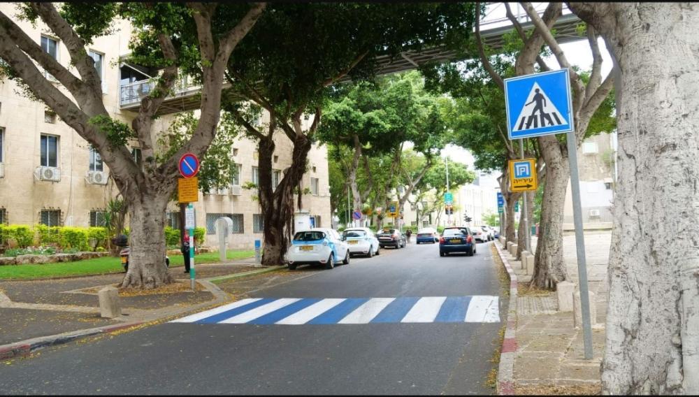 רחובות העיר חיפה נצבעו בכחול לבן  (צילום: עובדי העירייה)