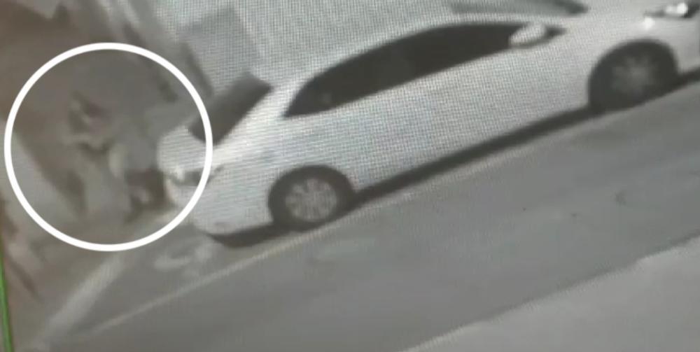 החשודה בהשחתת המזוזות בעיר חיפה