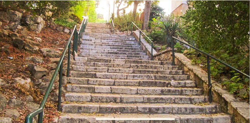מדרגות מהכרמל לעיר התחתית בחיפה (צילום: גילה זמיר)