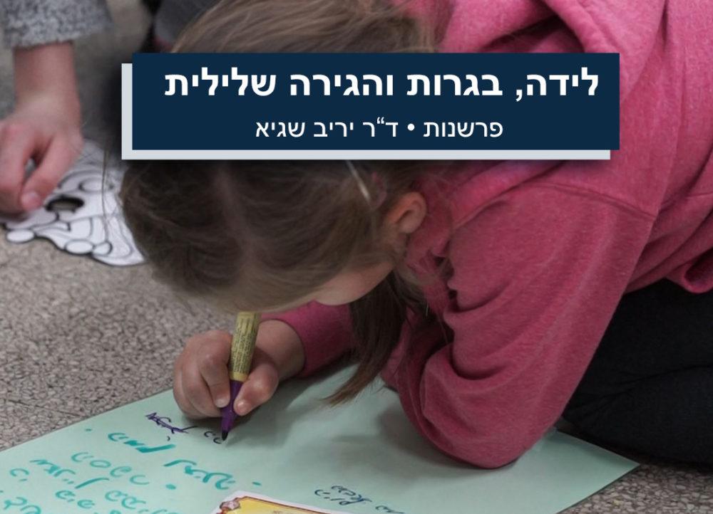 """הזכאות לבגרות, ההגירה השלילית וחדרי הלידה בחיפה • פרשנות • ד""""ר יריב שגיא"""