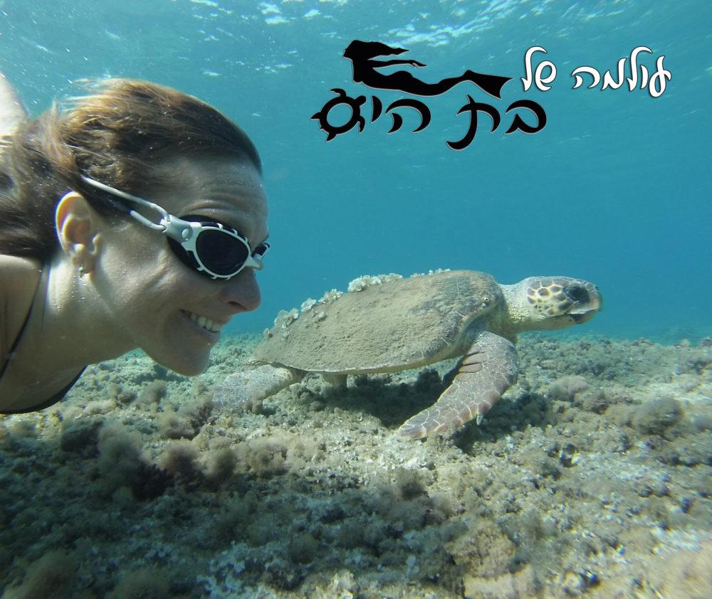 עולמה של בת הים וחברים (צילום: טל רז)