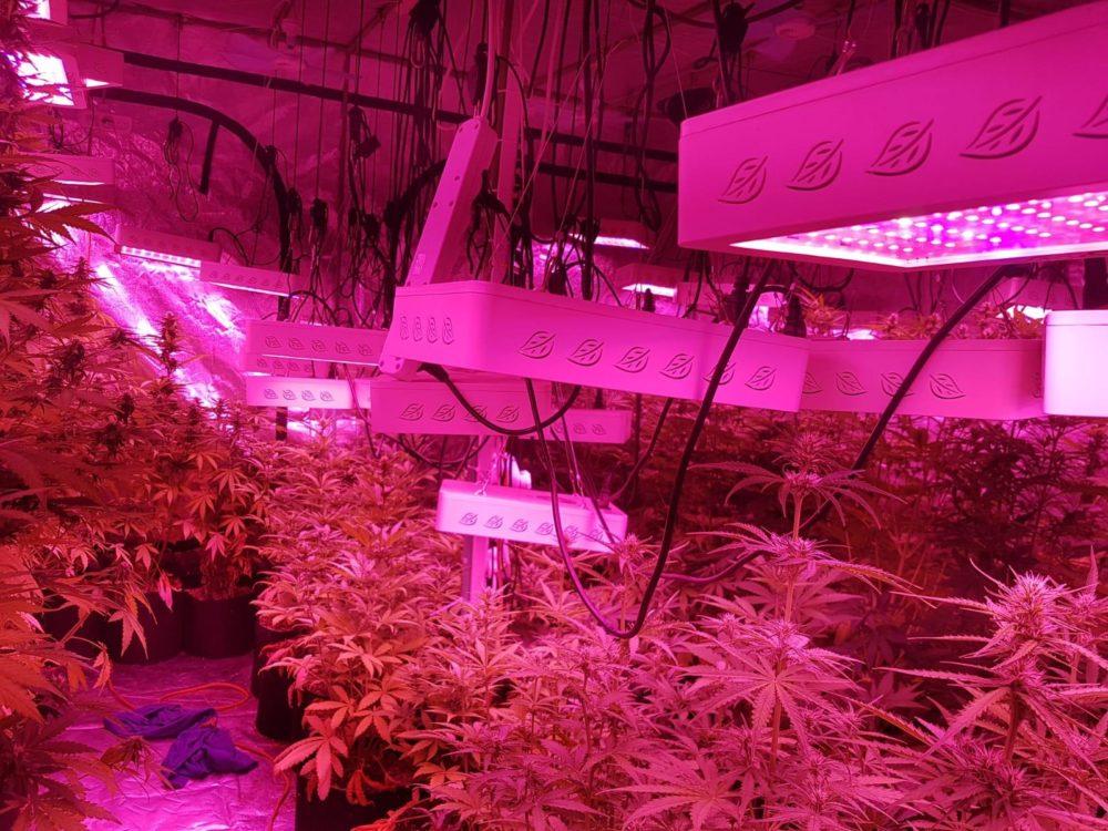 מעבדת סמים(צילום דוברות המשטרה)
