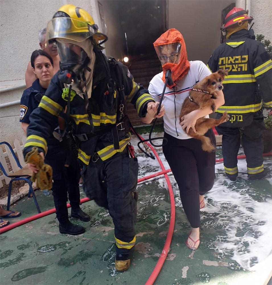 שרפה בדירה ברחוב אדמונד פלג בחיפה • שישה נפגעים במצב קל • דיירים חולצו עם מסכות מיוחדות (צילום: לוחמי האש)