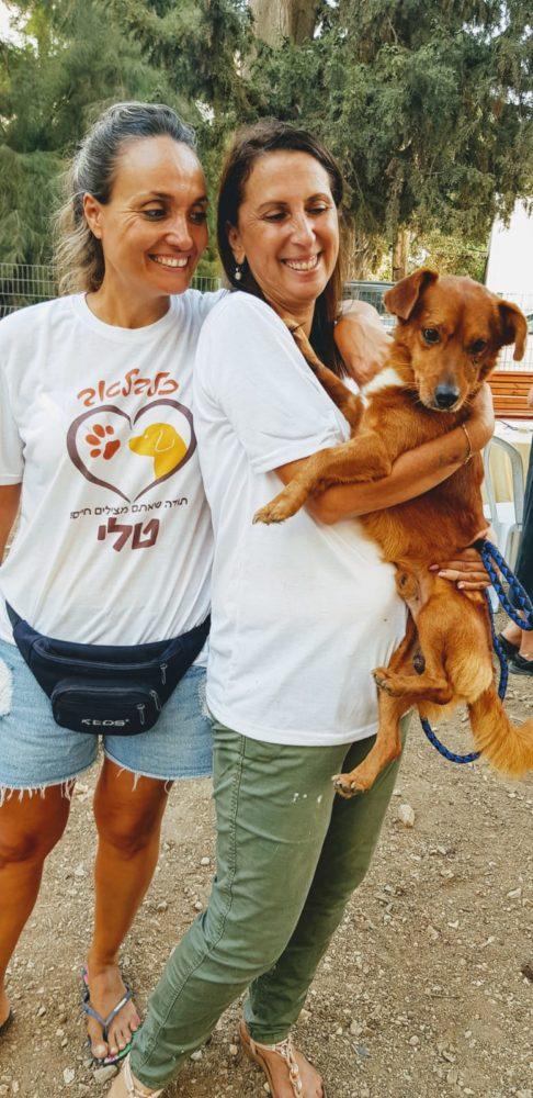 הפנינג אימוץ כלבים בקיבוץ יגור (צילום: מאיה שפירר)