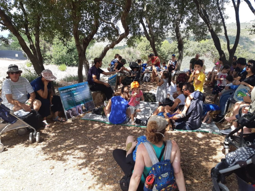 הפעלות לילדים ביום הנשר בחיפה (צילום: מאיה קדוש-חכמון)