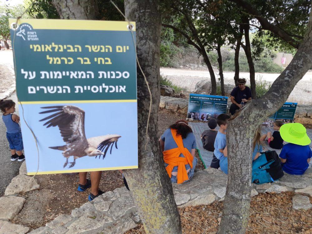 סדנת הסבר על הסכנות האורבות לנשרים - יום הנשר בחיפה (צילום: מאיה קדוש-חכמון)