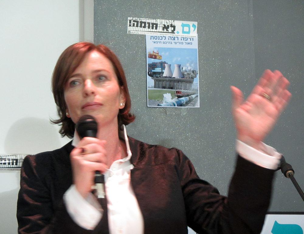"""עינת קליש רותם בעת קמפיין שיקוע הרכבת """"ים לא חומה"""" - כנס בקסטרא - ינואר 2013 (צילום - ירון כרמי)"""