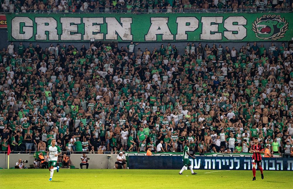 יציע הקופים הירוקים, שרי - מכבי חיפה - כדורגל (צילום: ירון כרמי)