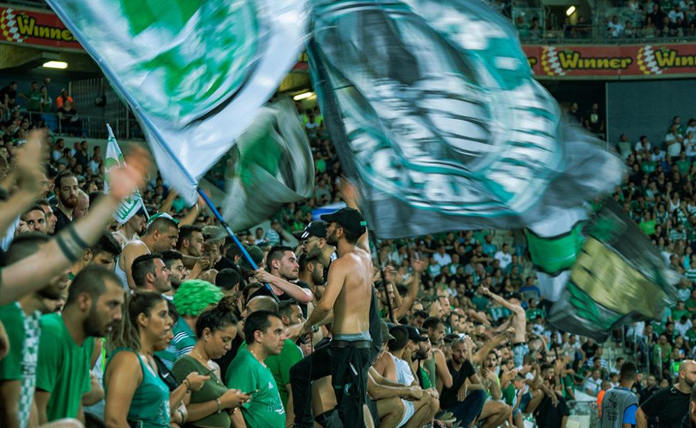 הקופים הירוקים - אוהדי מכבי חיפה - כדורגל (צילום: ירון כרמי)