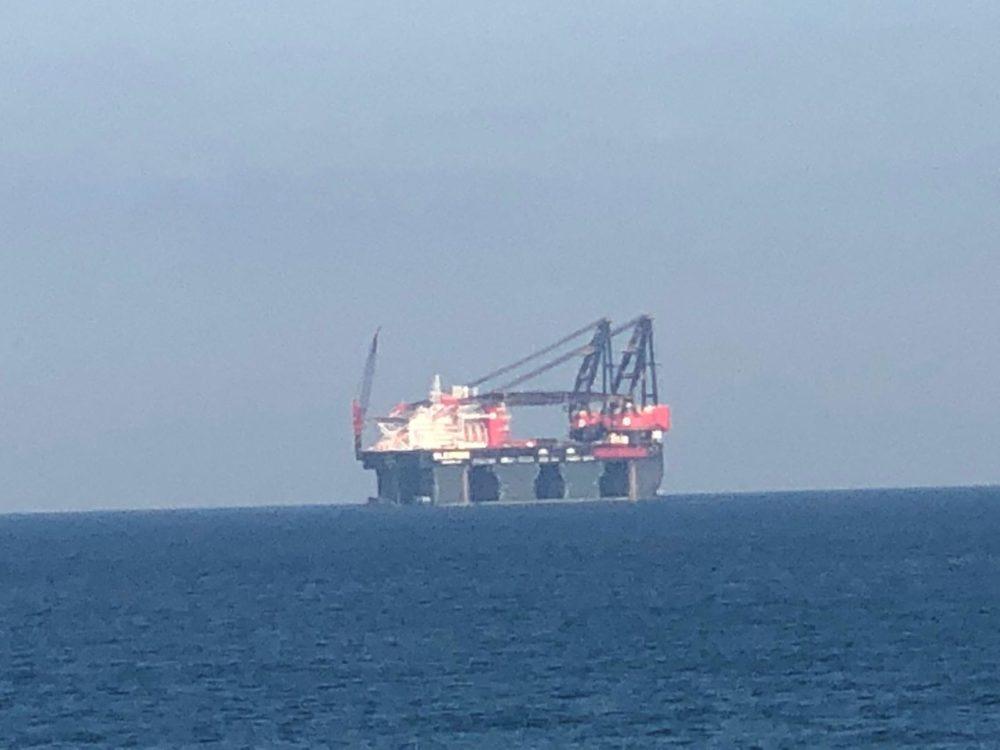 עגורן ימי חול חופי עין הים בחיפה (צילום: מרום בן אריה)