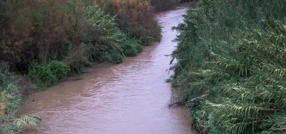 הירדן בזרימה – מבט מגשר אריק – ארכיון (צילום: ירון כרמי)