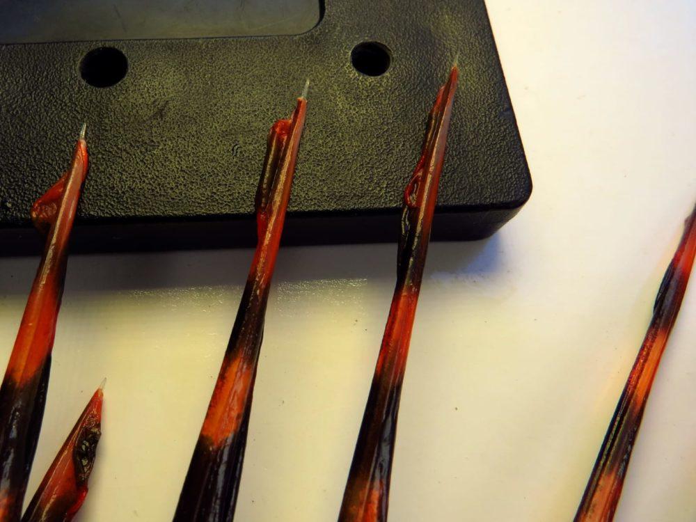 """זהרון - קוצים ארוכים וחדים כמחט, במקרה זה עשרה ס""""מ (צילום: מוטי מנדלסון)"""