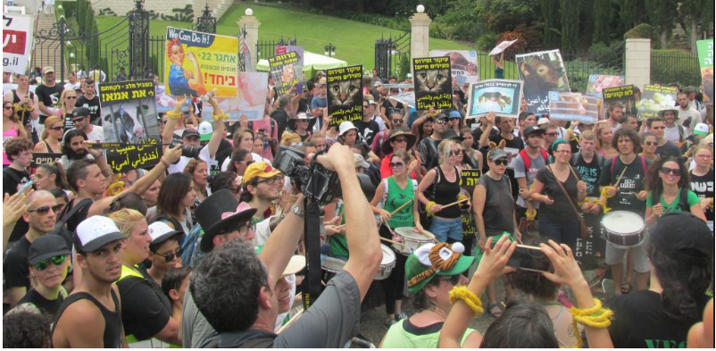 רבבות השתתפו בצעדת כולנו קולם (צילום: סמר עודה)