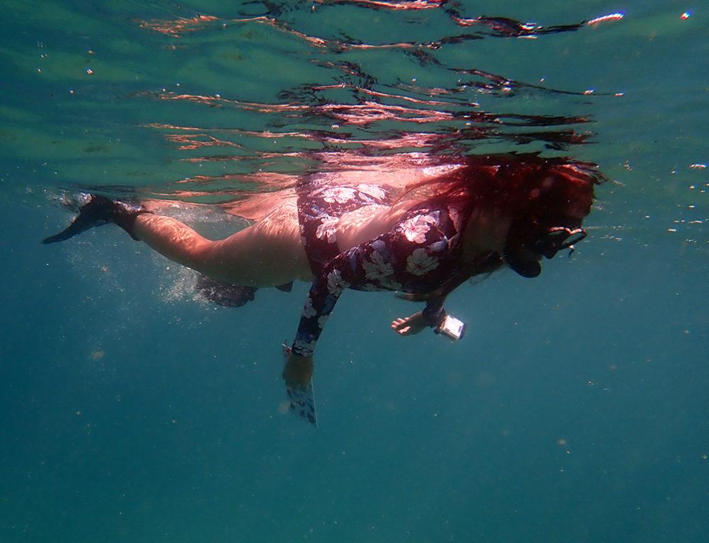 הילה פישוב בעקבות להקת דגי ברקודה בשמורת שקמונה בחיפה (צילום: שרה אוחיון)