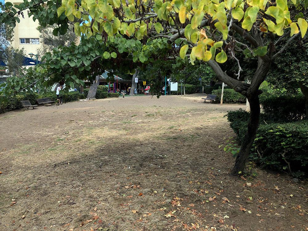 גן שמואל לפני השיפוץ - ספטמבר 2019 (צילום: ירון כרמי)