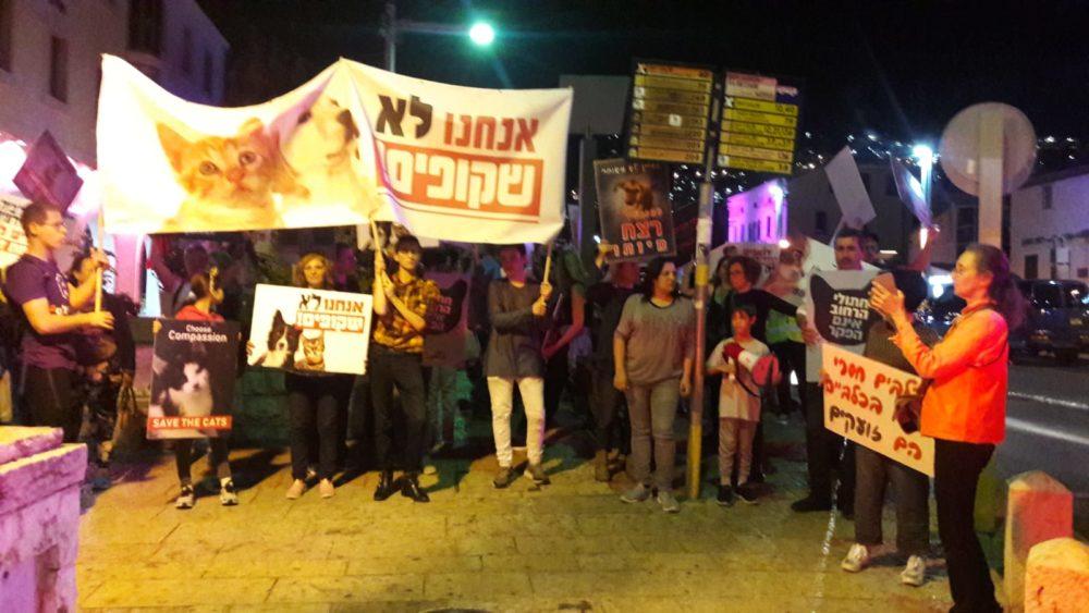 הפגנה למען בעלי החיים בחיפה 31/10/19 (צילום: עליזה ברקן)