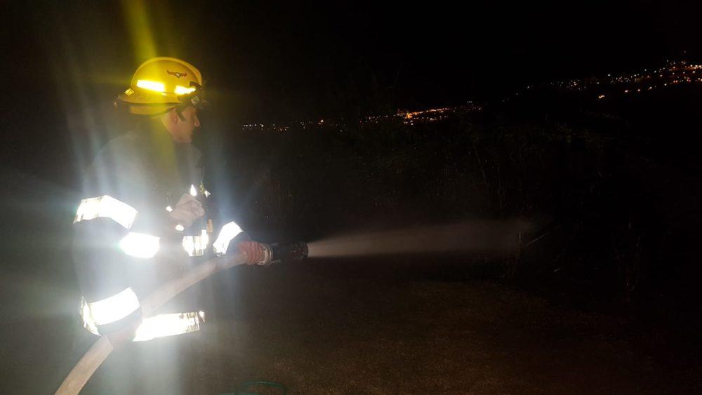 שריפת חורש ברחובות משה סנה וגרשון שופמן בשכונת דניה בחיפה (צילום: לוחמי האש)