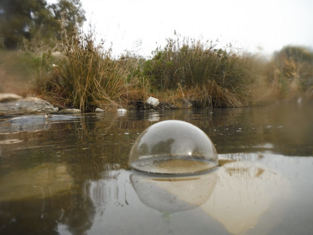 בועת אוויר בנחל הקישון לאחר צלילת נוטריה (צילום: מוטי מנדלסון)
