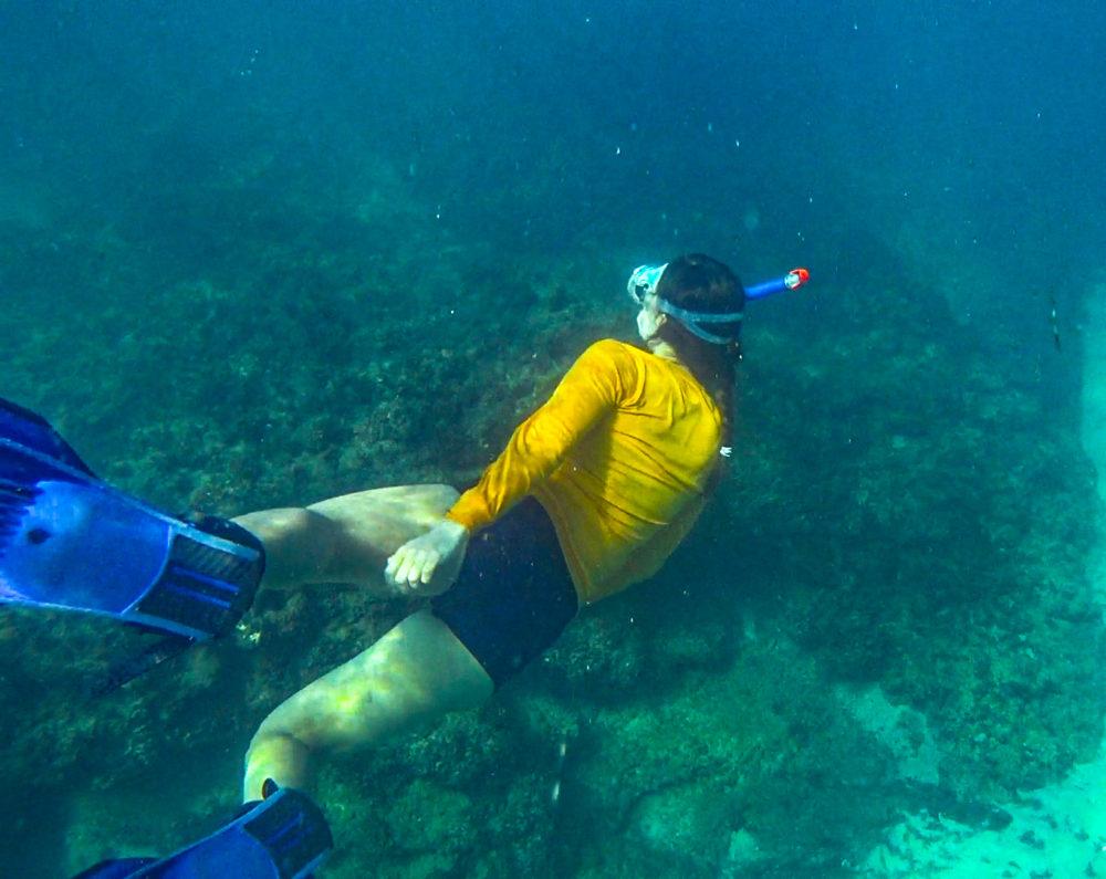 צלילה חופשית בריף בת גלים • הפנינג צלילה בבת גלים (צילום: ירון כרמי)