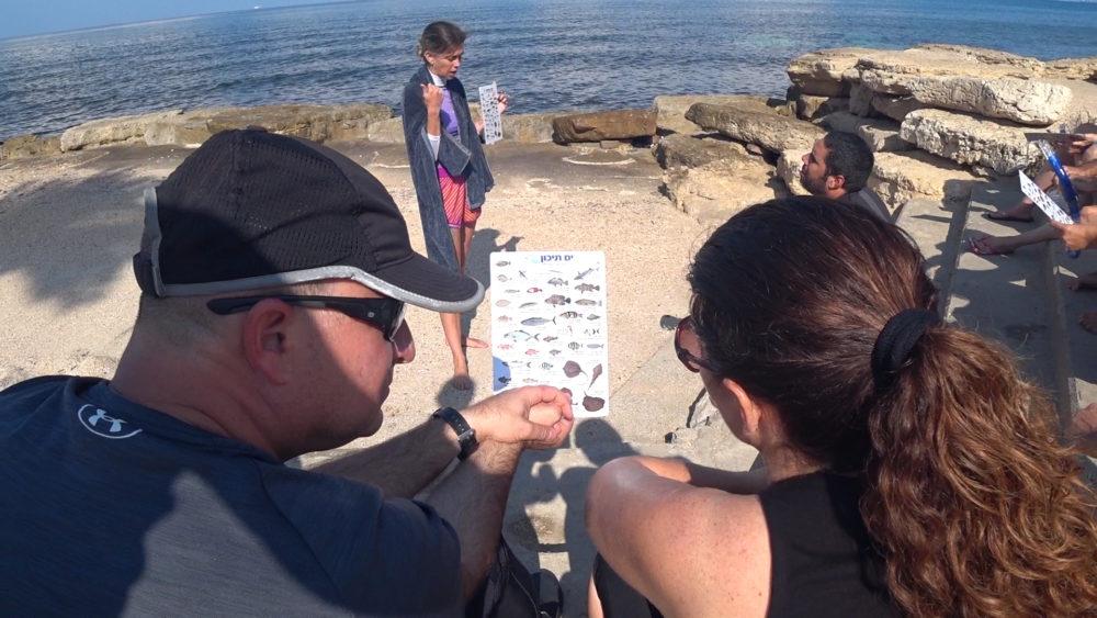תדריך לפני כניסה למים והסבר על הדגים • הפנינג צלילה בבת גלים (צילום: ירון כרמי)